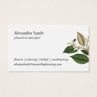 Vintage Lemon Botanical Print Business Card