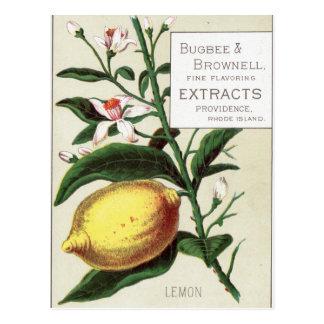 Vintage Lemon Postcard