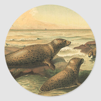 Vintage Leopard Seals by the Ocean, Wild Animals Round Sticker