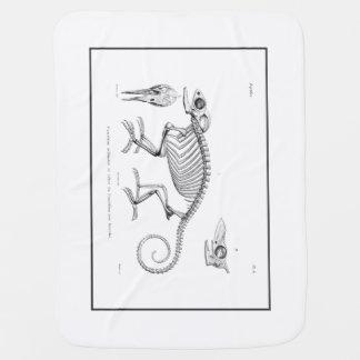 Vintage lizard skeleton buggy blanket