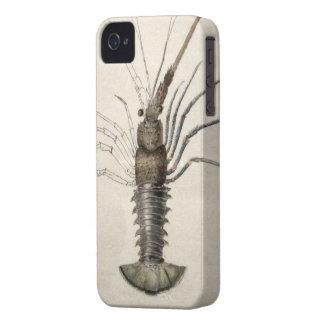 Vintage Lobster Artwork iPhone 4 Case-Mate Case