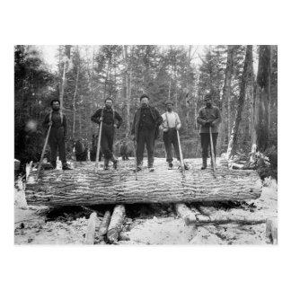 Vintage Loggers Postcard