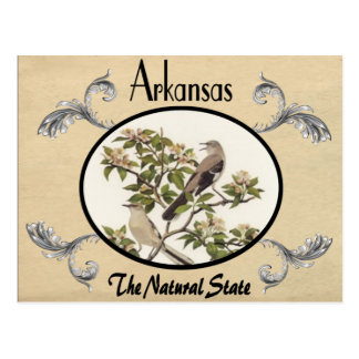Vintage Look Old Postcard Arkansas State