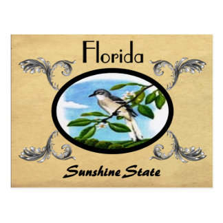 Vintage Look Old Postcard Florida State