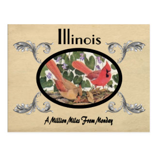 Vintage Look Old Postcard Illinois State