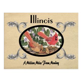 Vintage Look Old Postcard Illinois State