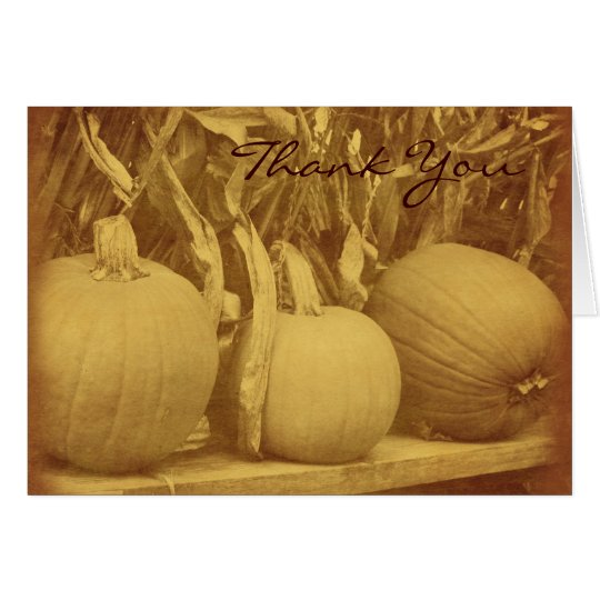 Vintage Look Pumpkins Cornstalks Fall Thank You Card