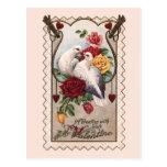 Vintage Love Birds and Roses Valentine Postcard