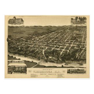 Vintage Map of Tuskaloosa, Alabama - 1887 Postcard