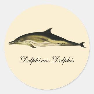 Vintage Marine Animals, Mammals, Dolphins Round Stickers