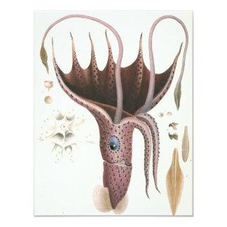 Vintage Marine Animals, Umbrella Squid Invitation
