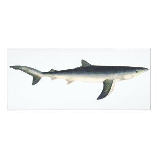 Vintage Marine Aquatic Ocean Life, Blue Shark Invitations