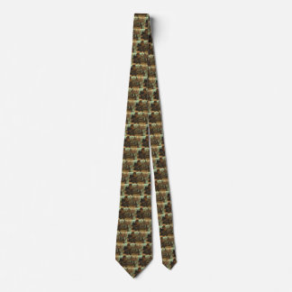 Vintage Marine Life Animal, Sea Lions on the Beach Tie