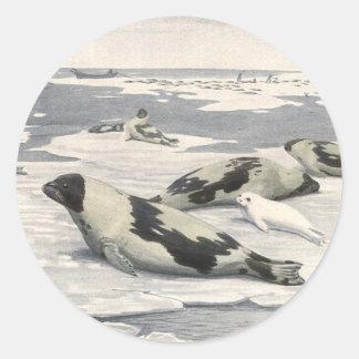 Vintage Marine Life Mammals Harp Seals Snow Arctic Round Stickers