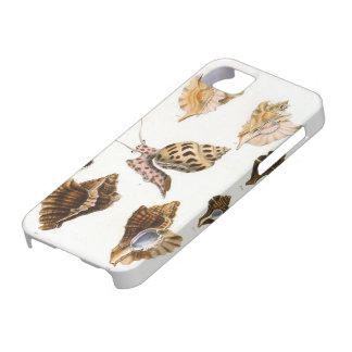 Vintage Marine Life Organisms, Snails and Mollusks Barely There iPhone 5 Case