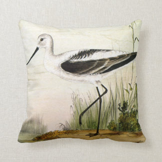Vintage Marine Life Shorebirds, Avocet Birds Cushion