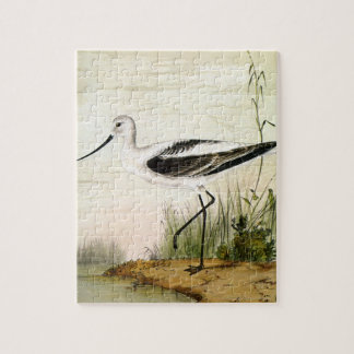 Vintage Marine Life Shorebirds, Avocet Birds Jigsaw Puzzle