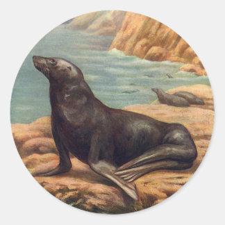 Vintage Marine Mammal Sea Lion by the Seashore Round Stickers