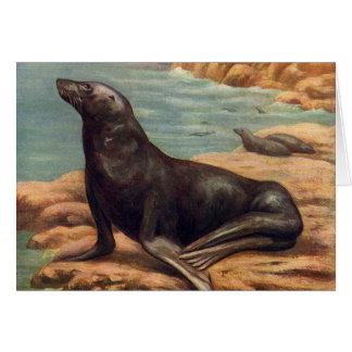 Vintage Marine Mammals, Sea Lion by the Seashore Card