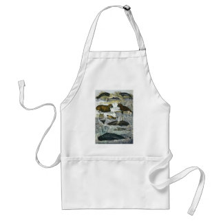 Vintage Marine Mammals; Whales, Walruses and Seals Aprons
