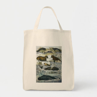 Vintage Marine Mammals; Whales, Walruses and Seals Tote Bag