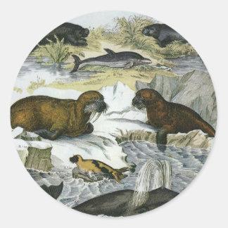 Vintage Marine Mammals; Whales, Walruses and Seals Round Sticker