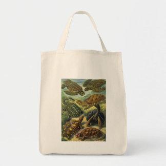 Vintage Marine Reptiles, Sea Turtles Land Tortoise Canvas Bags