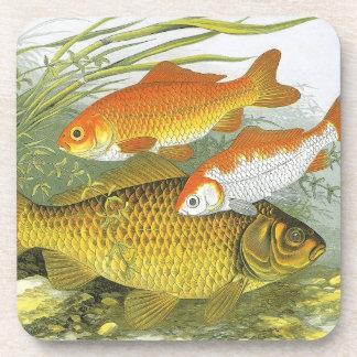 Vintage Marine Sea Life Fish, Aquatic Goldfish Koi Beverage Coasters