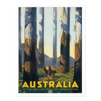 Vintage Marysville Victoria Australia Postcard