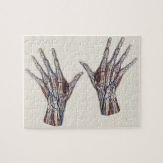 Vintage Medicine, Human Anatomy Hand Fingers Jigsaw Puzzle