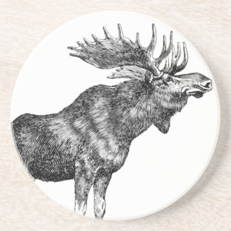 Vintage Moose Coaster