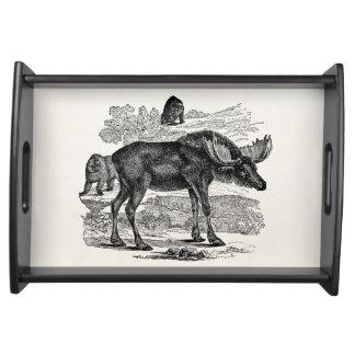 Vintage Moose Elk Personalized Animal Illustration Serving Tray