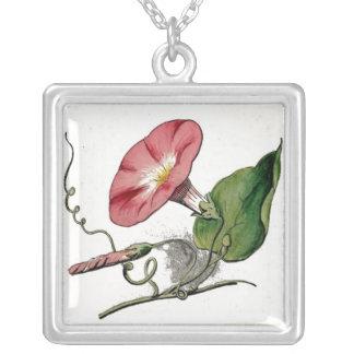 Vintage Morning Glory/ September flower Square Pendant Necklace