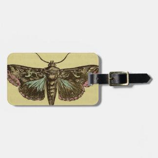 Vintage Moth Luggage Tag