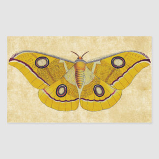 Vintage Moth Rectangular Sticker