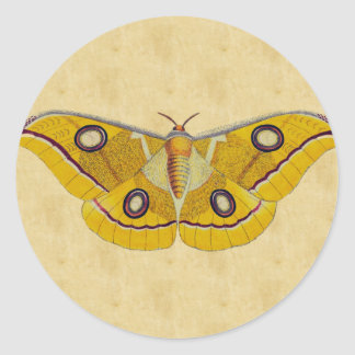 Vintage Moth Round Sticker