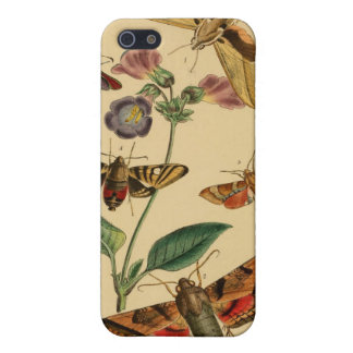 Vintage Moths Entomology Case iPhone 5 Covers