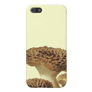 Vintage Mushroom Case iPhone 5 Cases