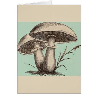 Vintage Mushroom Greeting Card