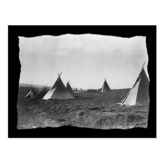 Vintage Native American Apache Tipis Postcard