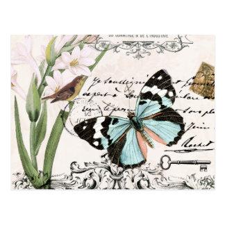 Vintage Nature's Beauty...postcard Postcard