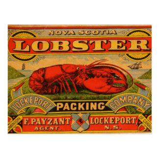 Vintage Nova Scotia Lobster Postcard