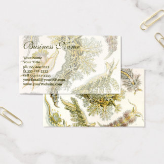 Vintage Nudibranchia, Sea Slugs by Ernst Haeckel Business Card