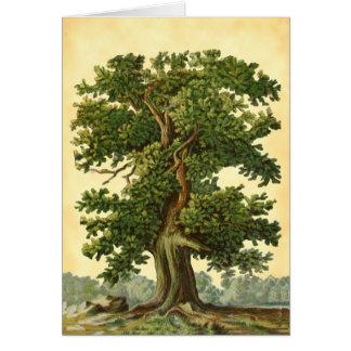 Vintage Oak Tree Faux Parchment Blank Art Card