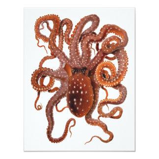 Vintage Octopus Macropus, Marine Aquatic Animals Card