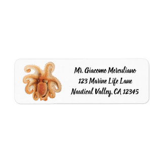 Vintage Octopus Salutii, Marine Aquatic Animals Return Address Label