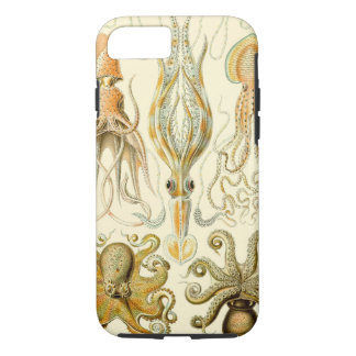 Vintage Octopus Squid Gamochonia by Ernst Haeckel iPhone 8/7 Case
