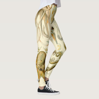 Vintage Octopus Squid Gamochonia by Ernst Haeckel Leggings