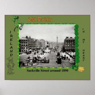 Vintage Old Dublin Poster