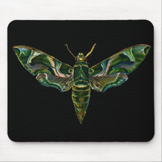 Vintage Oleander Hawk-moth Mouse Pad